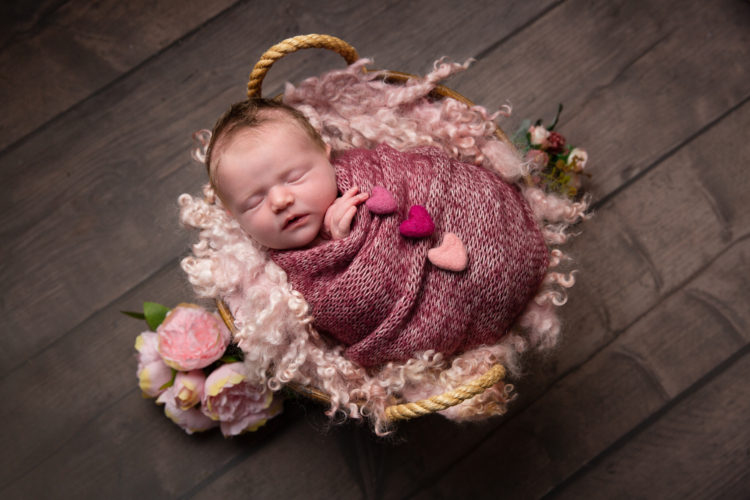 baby in basket on pink texure with roses